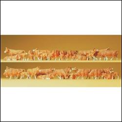 14409 Коровы рыжие (30) - фото 10920