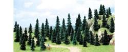 6597 Ели деревья 30-50мм (50шт.) - фото 12311