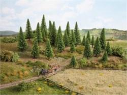 26925 Деревья Ели серебристые 5-14см (10шт) - фото 12571