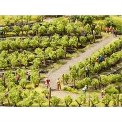 21540 Виноградник 24 лозы h-22мм - фото 13043