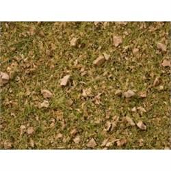 07079 Трава Альпийский луг 100г 2,5-6мм - фото 13083