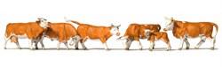 10146 Коровы рыжие - фото 13113