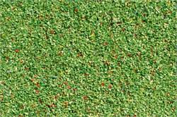 60822 Присыпка светло-зелёная (цветочный луг), 70г - фото 13251