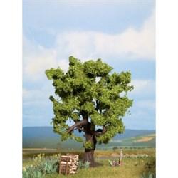 21760 Дуб 15 см деревья - фото 13358