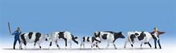 15724 Коровы, пастухи - фото 4266