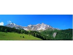 46111 Задник Альпийское предгорье (из 3-х частей) - фото 4764