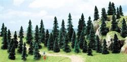 6497 Ели деревья 60-110мм (50шт.) - фото 5337
