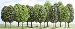 6586 Листвен.деревья 40-60мм (12шт.) - фото 5340