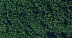 07206 Флок темно-зеленый 20г      - фото 5551