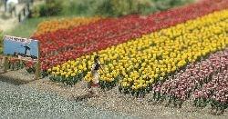 1206 Тюльпаны  - фото 7232