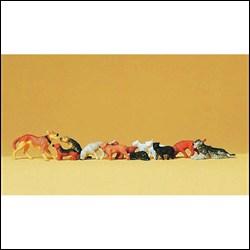 14165 Собаки+кошки    - фото 7489