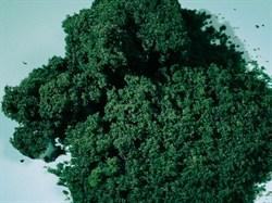76982 Флок темно-зеленый мелкий 1000 мл  - фото 7734