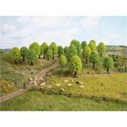 32801 Лиственные деревья 35-50мм 25шт