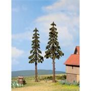 21926 Ели 16+17,5см деревья