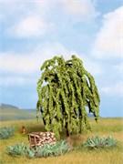 21770 Ива 11 см деревья