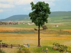 21914 Сосна 15см деревья