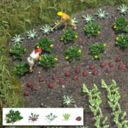 1222 Овощи и салаты